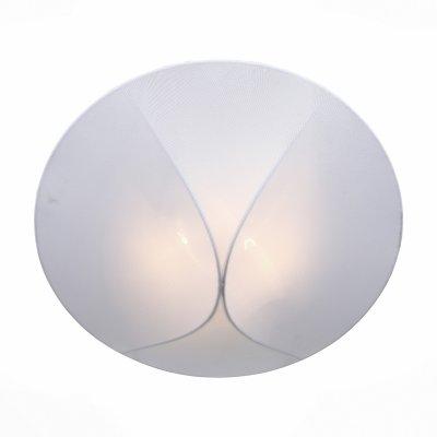 Светильник St Luce SL360.552.02Круглые<br>Настенно-потолочные светильники – это универсальные осветительные варианты, которые подходят для вертикального и горизонтального монтажа. В интернет-магазине «Светодом» Вы можете приобрести подобные модели по выгодной стоимости. В нашем каталоге представлены как бюджетные варианты, так и эксклюзивные изделия от производителей, которые уже давно заслужили доверие дизайнеров и простых покупателей.  Настенно-потолочный светильник St luce SL360.552.02 станет прекрасным дополнением к основному освещению. Благодаря качественному исполнению и применению современных технологий при производстве эта модель будет радовать Вас своим привлекательным внешним видом долгое время.  Приобрести настенно-потолочный светильник St luce SL360.552.02 можно, находясь в любой точке России.<br><br>S освещ. до, м2: 4<br>Тип лампы: Накаливания / энергосбережения / светодиодная<br>Тип цоколя: E27<br>Количество ламп: 2<br>MAX мощность ламп, Вт: 40<br>Диаметр, мм мм: 400<br>Высота, мм: 160