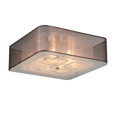 Люстра потолочная St luce SL940.802.06Потолочные<br>Если Вы настроены купить светильник модели SL94080206, то обратите внимание: Изящные и элегантные люстры коллекции Ajur украсят интерьер зала, спальни, кабинета, оформленных в неоклассическом стиле, стиле модерн или минимализм. <br>Ажурное переплетение металлической конструкции обрамляет плафон из органзы. Белое матовое стекло, закрывающие плафон снизу, создает мягкое уютное освещение в интерьере.<br><br>Установка на натяжной потолок: Ограничено<br>S освещ. до, м2: 12<br>Крепление: Планка<br>Тип лампы: галогенная / LED-светодиодная<br>Тип цоколя: G9<br>Количество ламп: 6<br>Ширина, мм: 400<br>MAX мощность ламп, Вт: 40<br>Длина, мм: 400<br>Высота, мм: 220<br>Поверхность арматуры: глянцевая<br>Оттенок (цвет): коричневый, белый<br>Цвет арматуры: серебристый