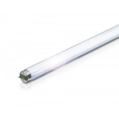 Лампа люминесцентная Philips TLD 36W/840 G13 холодно-белаяЛюм. лампы т8<br>В интернет-магазине «Светодом» можно купить не только люстры и светильники, но и лампочки. В нашем каталоге представлены светодиодные, галогенные, энергосберегающие модели и лампы накаливания. В ассортименте имеются изделия разной мощности, поэтому у нас Вы сможете приобрести все необходимое для освещения.   Лампа Philips TLD 36W/840 G13 холодно-белая обеспечит отличное качество освещения. При покупке ознакомьтесь с параметрами в разделе «Характеристики», чтобы не ошибиться в выборе. Там же указано, для каких осветительных приборов Вы можете использовать лампу Philips TLD 36W/840 G13 холодно-белаяPhilips TLD 36W/840 G13 холодно-белая.   Для оформления покупки воспользуйтесь «Корзиной». При наличии вопросов Вы можете позвонить нашим менеджерам по одному из контактных номеров. Мы доставляем заказы в Москву, Екатеринбург и другие города России.<br><br>Цветовая t, К: CW - холодный белый 4000 К<br>Тип лампы: люминесцентная<br>Тип цоколя: G13<br>Оттенок (цвет): холодно-белая<br>MAX мощность ламп, Вт: 36