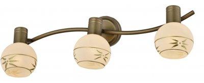Спот SHARLEEN TL3790Y-03AB ToplightОжидается<br><br><br>Тип цоколя: E14<br>Количество ламп: 3<br>Ширина, мм: 150<br>Высота, мм: 135<br>Оттенок (цвет): античная бронза<br>MAX мощность ламп, Вт: 40W