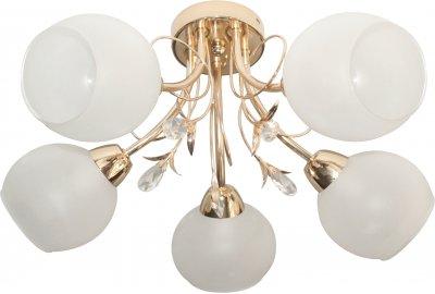 Люстра потолочная GWEN TL7460X-05FG ToplightОжидается<br><br><br>Тип цоколя: E14<br>Количество ламп: 5<br>Ширина, мм: 480<br>Высота, мм: 270<br>Оттенок (цвет): золотой<br>MAX мощность ламп, Вт: 40
