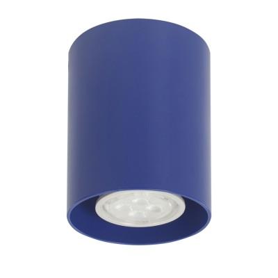 Артпром Tubo8 P1 19 Потолочный светильникнакладные точечные светильники<br>Настенно-потолочные светильники – это универсальные осветительные варианты, которые подходят для вертикального и горизонтального монтажа. В интернет-магазине «Светодом» Вы можете приобрести подобные модели по выгодной стоимости. В нашем каталоге представлены как бюджетные варианты, так и эксклюзивные изделия от производителей, которые уже давно заслужили доверие дизайнеров и простых покупателей.  Настенно-потолочный светильник Артпром Tubo8 P1 19 станет прекрасным дополнением к основному освещению. Благодаря качественному исполнению и применению современных технологий при производстве эта модель будет радовать Вас своим привлекательным внешним видом долгое время. Приобрести настенно-потолочный светильник Артпром Tubo8 P1 19 можно, находясь в любой точке России.<br><br>S освещ. до, м2: 3<br>Тип цоколя: GU10<br>Цвет арматуры: Синий<br>Количество ламп: 1<br>Диаметр, мм мм: 80<br>Высота, мм: 95<br>MAX мощность ламп, Вт: 50