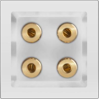 Акустическая розетка (белый) Werkel белый WL01-AUDIOx4Werkel<br>Розетки RJ45, RJ11, ТВ и AudioКрепление механизма к рамке: Werkel Easy ClickСтепень защиты от пыли и влаги: IР20Контактные зажимы: вкладного типа / винтового типаСечение подключаемых проводов: 0,4 - 0,8 мм2Срок службы: не менее 40000 циклов.Срок хранения до ввода в эксплуатацию: до 5 лет.ГОСТ Р 2011-51322.1 (МЭК 1:2006-60884)Упаковка: индивидуальная коробка с окном.<br>Стильная и привлекательная упаковка позволяет оценить внешний вид продукции, не вынимая ее из упаковки. Упаковка надежно защищает механизмы от повреждений.На упаковку нанесена вся необходимая информация.<br><br>Оттенок (цвет): белый