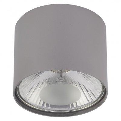 6876 SL серебро Nowodvorski Электростандарт Накладной точечный светильникНакладные точечные<br>Лампа: G9, max 75 Вт Размеры: ?110 x 110 мм Монтаж: накладной Материал: сталь Гарантия: 2 года<br>Строгие геометрические формы светильника позволяют использовать их как в классических, так и в современных дизайнерских интерьерах.<br>Корпус светильника изготовлен из стали высочайшего качества. Для покрытия использовалась порошковая краска и специальный лак, что делает светильник устойчивым к механическим повреждениям и гарантирует долговечность эксплуатации.<br>В качестве источника света в светильнике используется галогенная или светодиодная лампа с цоколем G9. Если вы решите применить галогенную лампу, то сможете диммировать ее. То есть регулировать яркость светового потока с помощью специального диммера.<br>Наш светильник имеет невысокую степень влагозащищенности (IP20), поэтому подходит для установки только в квартире или другом сухом помещении, где он не будет находиться под воздействием влаги.<br>Этот светильник предназначен для накладного монтажа, а это значит, что устанавливать его можно уже после того, как смонтирован потолок.<br><br>S освещ. до, м2: 4<br>Тип цоколя: G9<br>Диаметр, мм мм: 110<br>Высота, мм: 110<br>MAX мощность ламп, Вт: 75