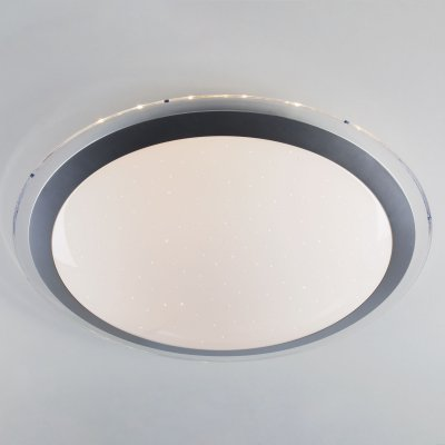 Потолочный светильник Евросвет 40004/1 LED матовое сереброОжидается<br><br>