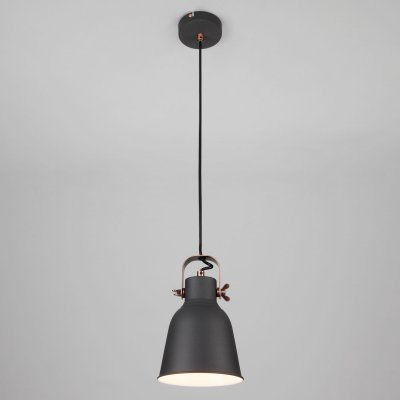 Светильник Евросвет 50083/1 черныйодиночные подвесные светильники<br>