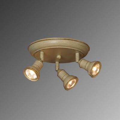 Поворотный светильник Lussole LSL-2507-03 от Svetodom