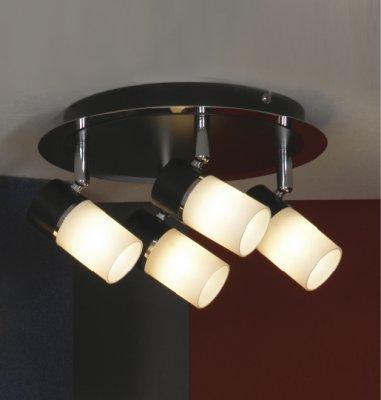 Люстра Lussole LSQ-6101-04 SiliquaПоворотные<br>Потолочная люстра Lussole LSQ-6101-04 Siliqua – отличное решение для интерьера в стиле «модерн»! Яркие, контрастные оттенки белого и черного цвета, «четкие» линии, «минималистичная» конструкция придадут комнате современный, элегантный и неповторимый облик. Поворотный механизм позволяет Вам самостоятельно регулировать направление лучей света, меняя их в зависимости от Вашего желания и необходимости усиления или уменьшения подсветки. Этот прием часто используется дизайнерами при проектировании помещения, т.к. помогает менять вид пространства, не занимаясь при этом ремонтом и покупкой новых вещей. Чтобы комната выглядела уютной и гармоничной, в качестве основной цветовой палитрой рекомендуем Вам использовать аналогичные оттенки с добавлением не более трех контрастных тонов в виде небольших аксессуаров.<br><br>Установка на натяжной потолок: Ограничено<br>S освещ. до, м2: 11<br>Крепление: Планка<br>Тип лампы: галогенная / LED-светодиодная<br>Тип цоколя: G9<br>Количество ламп: 4<br>MAX мощность ламп, Вт: 40<br>Диаметр, мм мм: 240<br>Высота, мм: 180<br>Оттенок (цвет): белый<br>Цвет арматуры: серебристый