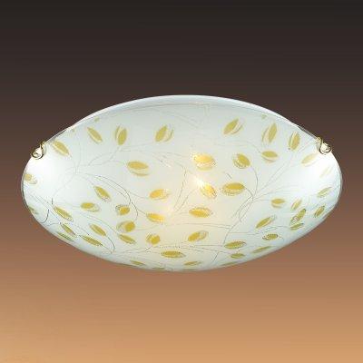 Светильник Сонекс 223 ETRAКруглые<br>Настенно-потолочные светильники – это универсальные осветительные варианты, которые подходят для вертикального и горизонтального монтажа. В интернет-магазине «Светодом» Вы можете приобрести подобные модели по выгодной стоимости. В нашем каталоге представлены как бюджетные варианты, так и эксклюзивные изделия от производителей, которые уже давно заслужили доверие дизайнеров и простых покупателей.  Настенно-потолочный светильник Сонекс 223 станет прекрасным дополнением к основному освещению. Благодаря качественному исполнению и применению современных технологий при производстве эта модель будет радовать Вас своим привлекательным внешним видом долгое время. Приобрести настенно-потолочный светильник Сонекс 223 можно, находясь в любой точке России.<br><br>S освещ. до, м2: 10<br>Тип лампы: Накаливания / энергосбережения / светодиодная<br>Тип цоколя: E27<br>Количество ламп: 2<br>MAX мощность ламп, Вт: 100<br>Диаметр, мм мм: 400<br>Цвет арматуры: золотой