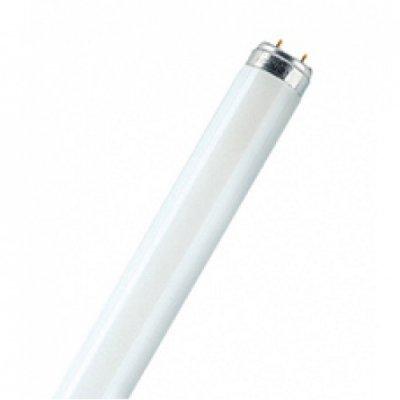 Лампа люминесцентная Philips TLD 18W/830 G13 тепло-белаяЛюм. лампы т8<br>В интернет-магазине «Светодом» можно купить не только люстры и светильники, но и лампочки. В нашем каталоге представлены светодиодные, галогенные, энергосберегающие модели и лампы накаливания. В ассортименте имеются изделия разной мощности, поэтому у нас Вы сможете приобрести все необходимое для освещения. <br> Лампа Philips TLD 18W/830 G13 тепло-белая обеспечит отличное качество освещения. При покупке ознакомьтесь с параметрами в разделе «Характеристики», чтобы не ошибиться в выборе. Там же указано, для каких осветительных приборов Вы можете использовать лампу Philips TLD 18W/830 G13 тепло-белаяPhilips TLD 18W/830 G13 тепло-белая. <br> Для оформления покупки воспользуйтесь «Корзиной». При наличии вопросов Вы можете позвонить нашим менеджерам по одному из контактных номеров. Мы доставляем заказы в Москву, Екатеринбург и другие города России.<br><br>Цветовая t, К: WW - теплый белый 2700-3000 К<br>Тип лампы: люминесцентная<br>Тип цоколя: G13<br>MAX мощность ламп, Вт: 18<br>Оттенок (цвет): тепло-белая